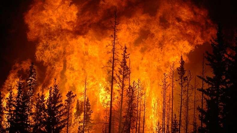 В канадской провинции Альберта из-за лесных пожаров эвакуированы 8 тыс. человек