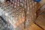 Վանաձորում հայտնաբերվել է ալկոհոլային խմիչքի, այսպես ասած, գործարան (Տեսանյութ)