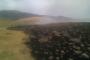 Արայի լեռան ստորոտում հրդեհաշիջման աշխատանքները շարունակվում են /փոփոխված/