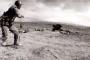 Բացառիկ զորավարժություն` պահեստազորի ներգրավմամբ. ՊՆ-ն տեսանյութ է տարածել