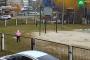 Նիժնեվարտովսկում բուլտերյերը հարձակվել է 3-րդ դասարանի աշակերտուհիների վրա /տեսանյութ/