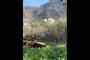 Հրապարակվել են հակառակորդի կողմից Հայաստանի սահմանի թիրախավորման կադրերը