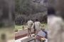 Ադրբեջանցի զինվորները պղծում են հայկական գերեզմանները