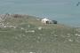 Հայաստան ներխուժած ադրբեջանցիների համար սնունդ են բերել Ադրբեջանից ու զենք մատակարարել. «Հրապարակ»